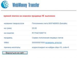 прямой платеж на кошелек продавца НЕ выполнен
